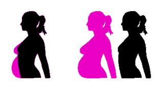 Molumen_pregnancy_silhouet